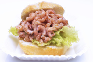 North Sea prawn sandwich, cut-out, white backgroundの写真素材 [FYI04332891]