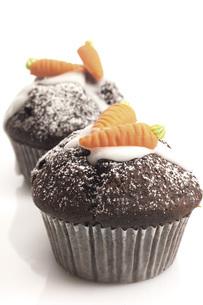Chocolate muffinsの写真素材 [FYI04332920]