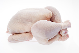 Fresh chickenの写真素材 [FYI04332942]