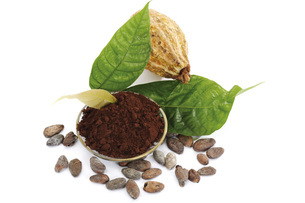 Cocoa powder with beans and leaves, close-upの写真素材 [FYI04332951]