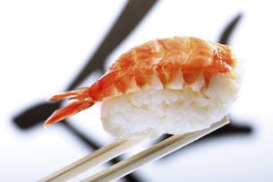 Nigiri sushi with prawnの写真素材 [FYI04332956]