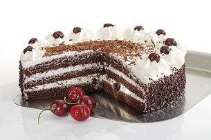 Black Forest Cake and fresh cherriesの写真素材 [FYI04333016]
