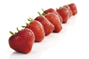 Strawberries in a row, close-upの写真素材 [FYI04333017]