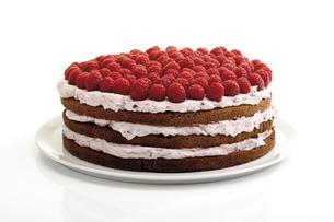 Raspberry cream cake, close-upの写真素材 [FYI04333058]