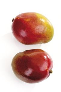 Mangosの写真素材 [FYI04333188]