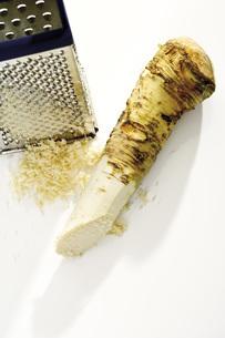 Horseradish grated, elevated viewの写真素材 [FYI04333195]