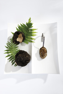 Black Truffles and truffle pesto on spoon, elevated viewの写真素材 [FYI04333301]