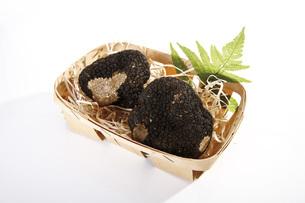 Black Truffles in basketの写真素材 [FYI04333303]