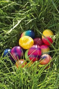 Easter nestの写真素材 [FYI04333354]