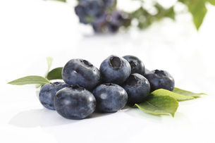 Blueberriesの写真素材 [FYI04333386]