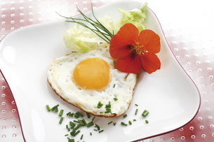 Heart-shaped fried egg on plateの写真素材 [FYI04333391]
