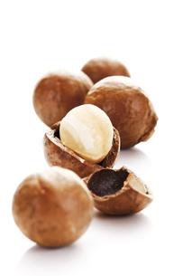 Macadamia nutsの写真素材 [FYI04333415]