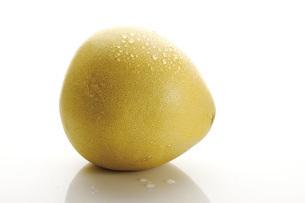Honey Pomelo, close-upの写真素材 [FYI04333417]
