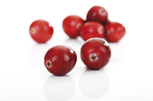 Cranberries (Vaccinium macrocarpon)の写真素材 [FYI04333426]