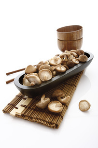 Shiitake Mushroom on plateの写真素材 [FYI04333437]