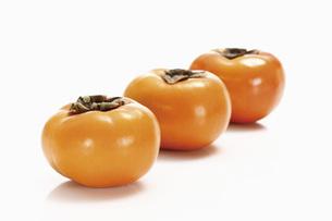 Kaki fruits in a rowの写真素材 [FYI04333454]