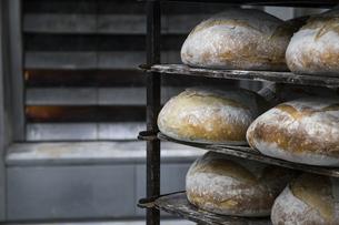 Trays of bread in a bakeryの写真素材 [FYI04333874]