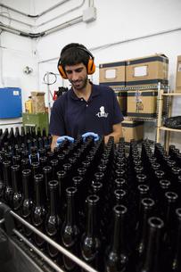 Man working in beer bottling plantの写真素材 [FYI04333911]