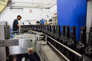 Men working in beer bottling plantの写真素材 [FYI04333916]