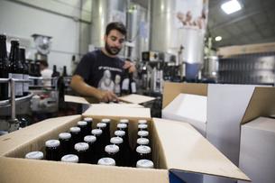 Man working in beer bottling plantの写真素材 [FYI04333920]