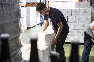 Man packing beer bottles in boxesの写真素材 [FYI04333921]