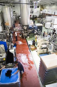 Men working in a beer factoryの写真素材 [FYI04333927]