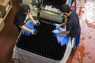 Men working in beer bottling plantの写真素材 [FYI04333929]