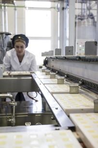 Woman working in a chocolate factoryの写真素材 [FYI04333963]