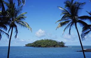 Devil\\\'s Island French Guaiana ABC-Islandsの写真素材 [FYI04334059]