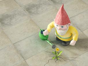 Garden gnome watering dandelion, 3D Renderingのイラスト素材 [FYI04334096]