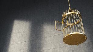Empty golden birdcageのイラスト素材 [FYI04334104]