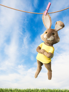 Easter bunny hanging on clothes line with arms crossedのイラスト素材 [FYI04334111]