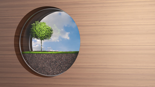 Porthole in wooden wall with tree growing on grassのイラスト素材 [FYI04334184]