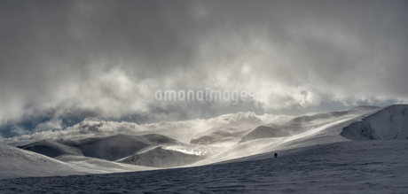 United Kingdom, Scotland, Cairngorms, people in the backgrouの写真素材 [FYI04334464]