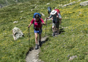 Switzerland, Maountaineers hiking near Chanrion hutの写真素材 [FYI04334490]