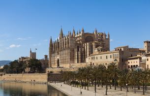 Spain, Mallorca, View of La Seu Cathedralの写真素材 [FYI04334567]
