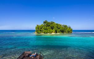 Caribbean, Jamaica, Port Antonio, Pellew Islandの写真素材 [FYI04334656]