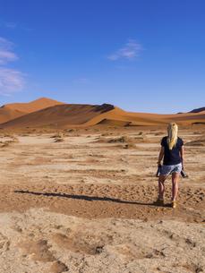 Namibia, Sossusvlei, Region Hardap, Namib-Naukluft Nationalの写真素材 [FYI04334676]
