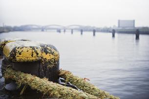 Germany, Hamburg, Old Warehouse District, Pollard with rope,の写真素材 [FYI04334744]