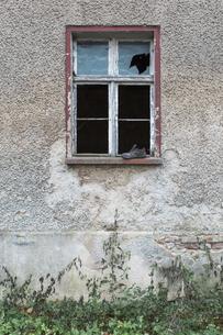 Germany, Brandenburg, facade and window of ramshackle resideの写真素材 [FYI04334772]