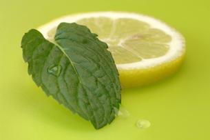 Lemon slice and mint leaf, close-upの写真素材 [FYI04334920]