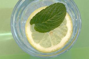 Peppermint on slice of lemon in glass of waterの写真素材 [FYI04334927]