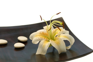 Lily blossom and stones on table, close-upの写真素材 [FYI04334936]