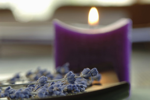 Lavender flowers, beside a candle, close-upの写真素材 [FYI04335007]