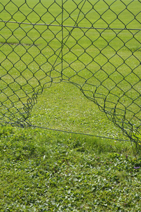 Wire mesh fence with a hole at a football groundの写真素材 [FYI04335110]