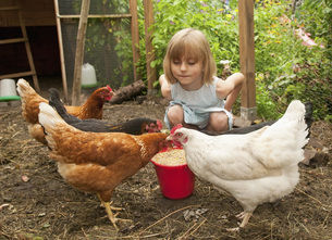 Germany, Brandenburg, Girl on hen farmの写真素材 [FYI04335358]