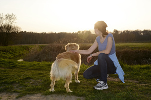 Young woman with Golden Retriever on meadow at sunsetの写真素材 [FYI04335385]