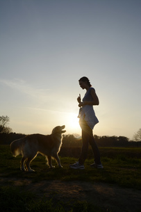 Young woman training Golden Retriever on meadow at sunsetの写真素材 [FYI04335386]