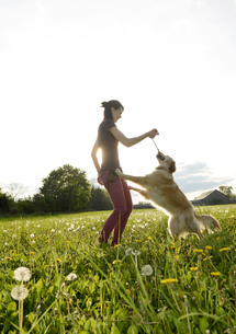 Young woman playing with Golden Retriever on meadowの写真素材 [FYI04335387]