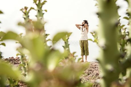 Man standing on rock behind cactiの写真素材 [FYI04335457]